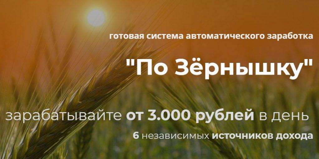 курс по зернышку,Александр Писаревский