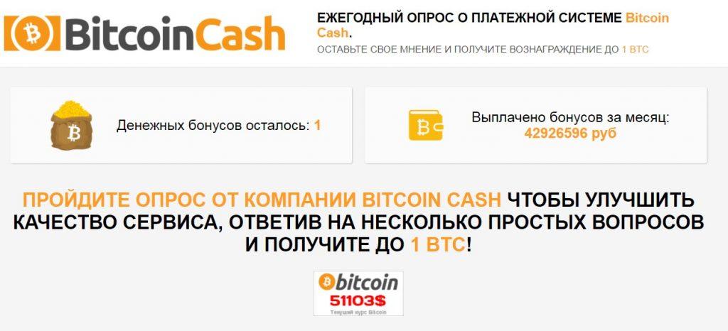 Bitcoin Cash отзывы