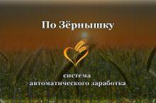 По Зёрнышку — отзывы о системе автоматического заработка Александра Писаревского