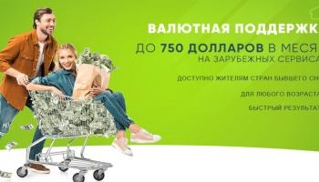 Валютная поддержка — принесет до 750 долларов в месяц. Правда это или нет?