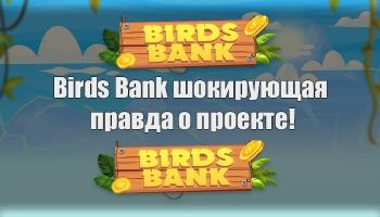 Birds Bank шокирующая правда о проекте!